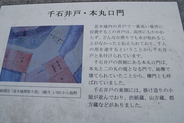 DSC_0721.JPG